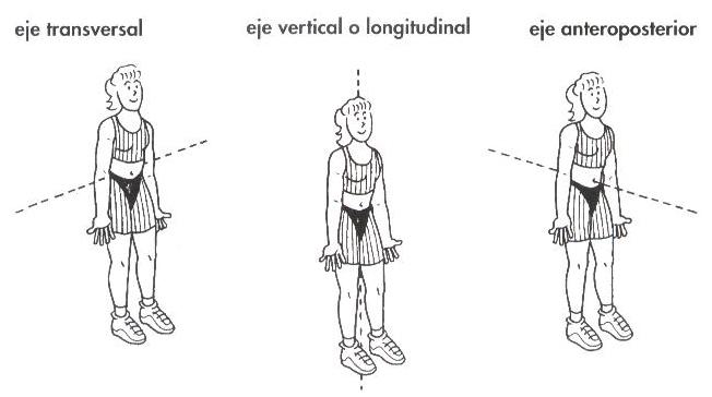 Curso del Metodo Pilates - Ejes y planos de movimiento del cuerpo ...